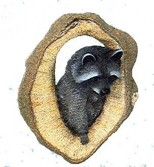 Raccoon Wall Plaque