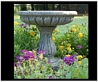 Classical Garden Bird Bath