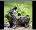 Scottish Terrier Garden Planter