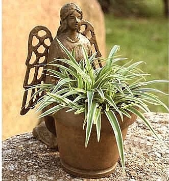 Angel Planter