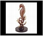 Graceful Spiny Seahorse