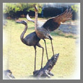 Explore bird statues like our large to life size crane statues, herons and tabletop bird statues like our cranes and herons for the home. Also visit for life size crane and heron fountain spitters for the garden pond. Note a choice of dove statues, seagulls and the graceful swan sculptures.