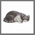 Discover bronze and garden cat statues including concrete cat statues and memorial cat gifts and sculptures.