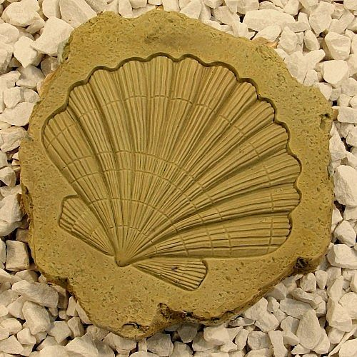 Cockle Shell Stepping Stone