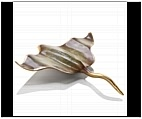 Sting Ray - Desktop Ornament